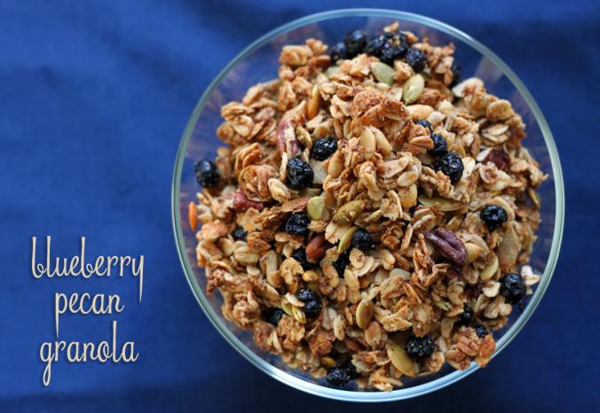 blueberry-pecan-granola_9765859846_o