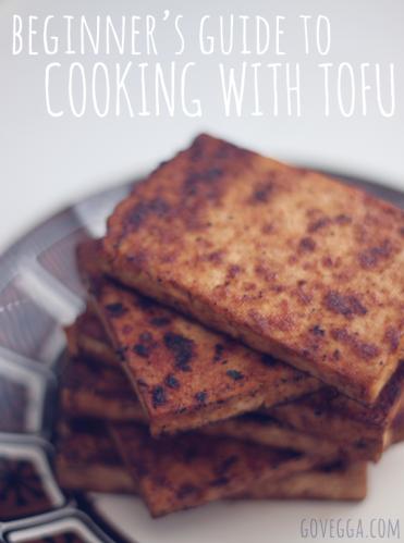 beginnersguide_tofu