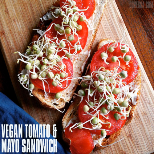 Vegan open-faced tomato-mayo sandwich // govegga.com