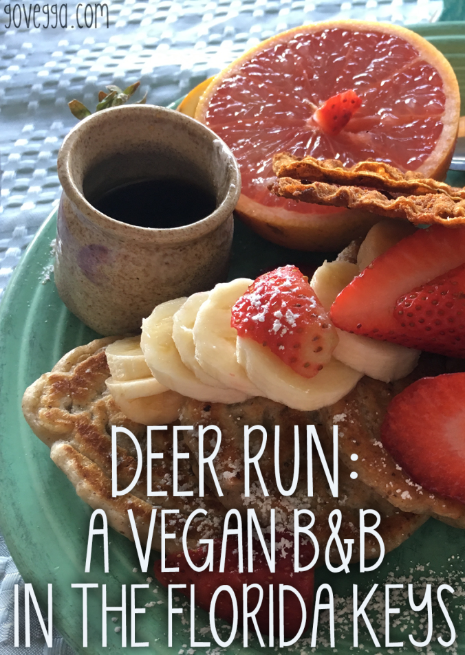 Deer Run Vegan Bed and Breakfast // govegga.com