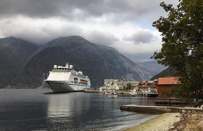 All-vegan cruise in Norway
